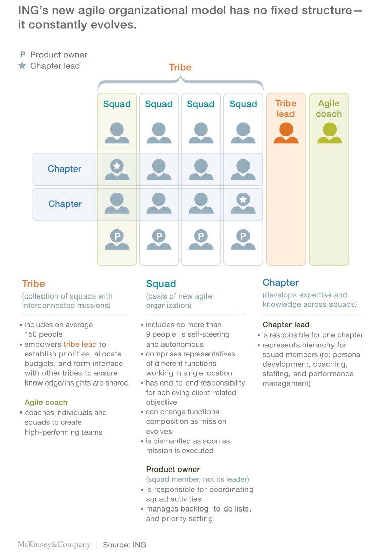 Agilis szervezeti struktúra