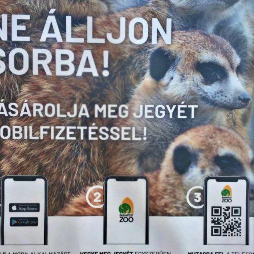 Megérkezett a mobilfizetés és a mobiljegy az Állatkertbe