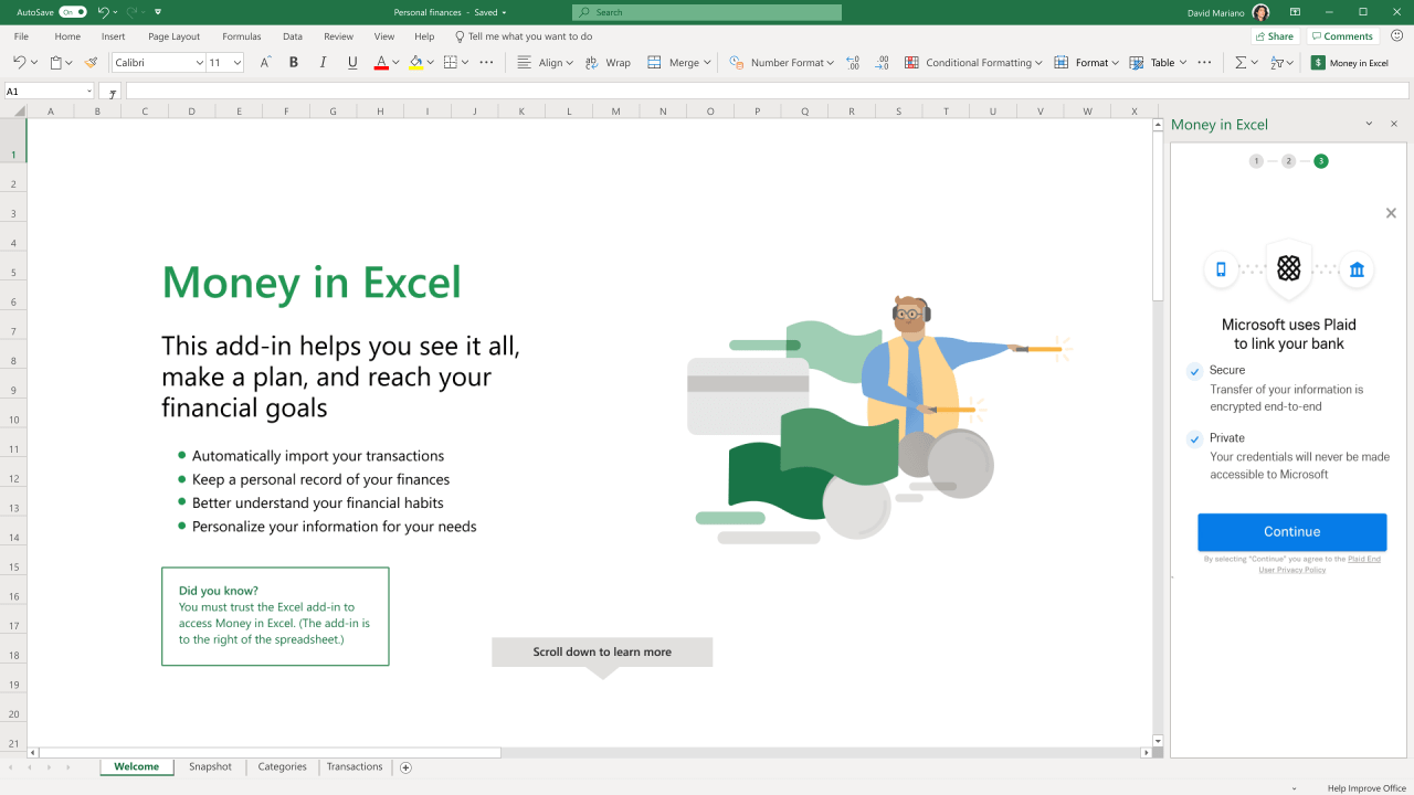 Money in Excel Plaid